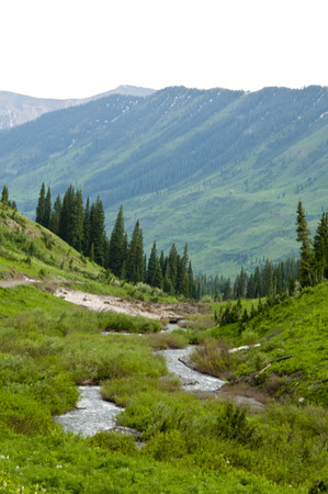 runoff: Snow runoff in spring in the Colorado mountains  Stock Photo