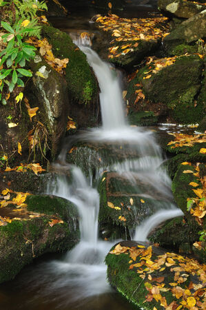 great smokies: Small waterfall in fall in The Great Smoky Mountains  Stock Photo