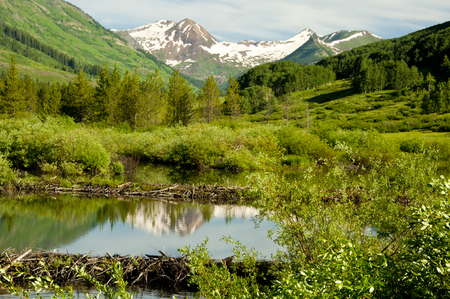 Snow-capped mountain reflection in a clear