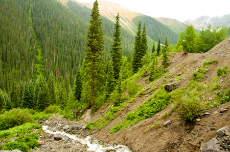 runoff: Mountain view of snow runoff in Colorado mountains