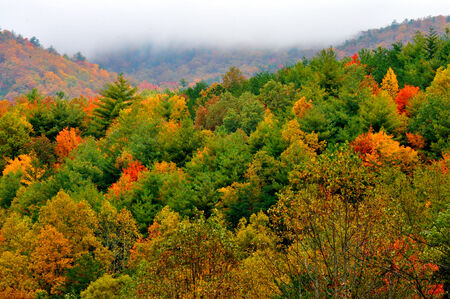 Great Smoky Mountains in fall.