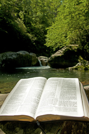 An open Bible lays on a log beside cool clear waters. Stock Photo