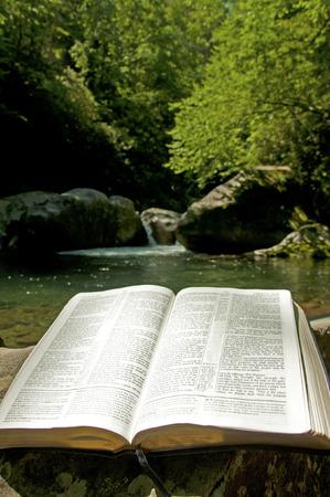 Een open Bijbel legt op een log naast koele heldere water.