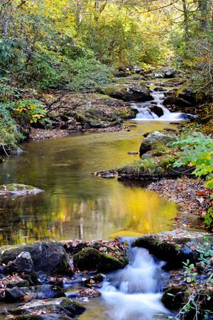 smokies: Vertical, Reflexiones de la ca�da de agua en las Monta�as Humeantes. Foto de archivo