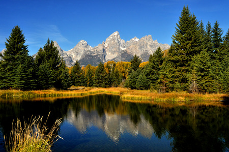 Water reflections in fall in the Grand Tetons.