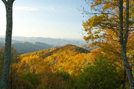 smoky mountains: Fall vistas in the Great Smoky Mountains. Stock Photo