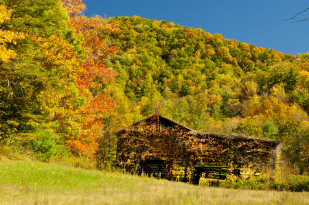Old tobacco barn in fall in the Smokies. photo