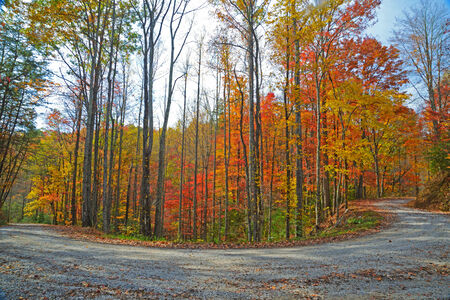 switchback: Switchback country road in fall colors.