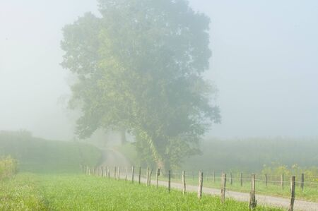 homesteads: Fog lays over the fields of Cades Cove.