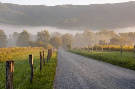 Early morning light on gravel road in Cades Cove.