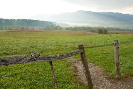 great smokies: Early morning light in fields of Cades Cove.