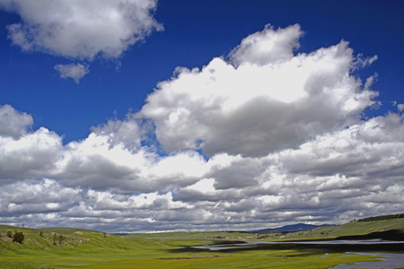 thundering: Gorgeous blue skies, white clouds over green prairie of Yellowstone. Stock Photo