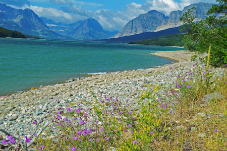 Shoreline of a clear blue lake in Glacier National Park.