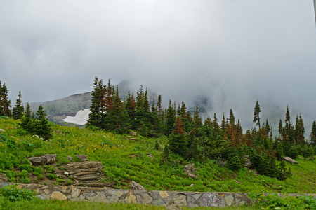 Fog covers the land in Glacier National Park.