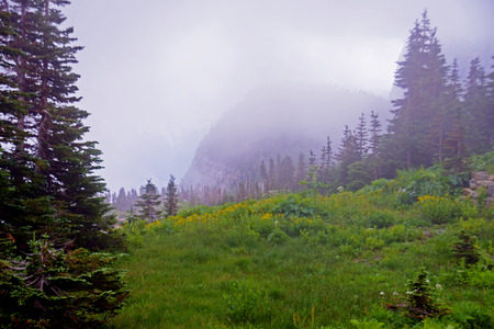 Glacier National Park in summer and fog. Stock Photo