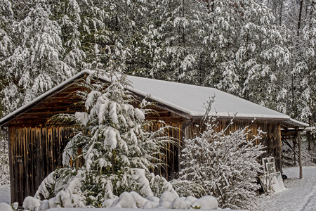 Snow covers an old wooden building, and surrounding trees.