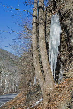 A long icile hangs from a waterfall near a paved road.