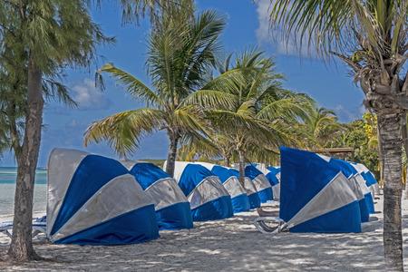 Blue and white beach umbrellas sit under palm trees,