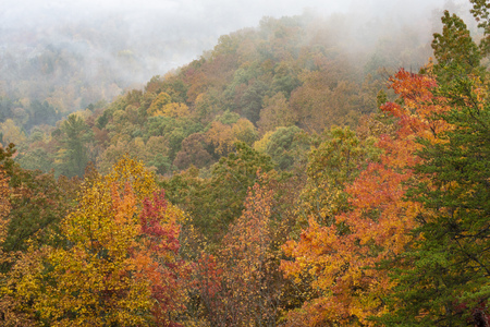 Fog covers the mountains in fall colors of the Smokies.