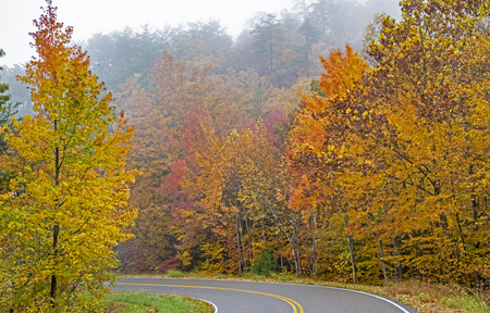 A scenic byway on a Smoky Mountains fall, foggy day.