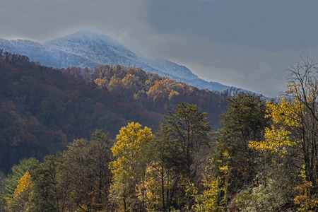 Fall colors and snow in the background in the Smoky Mountains. Reklamní fotografie