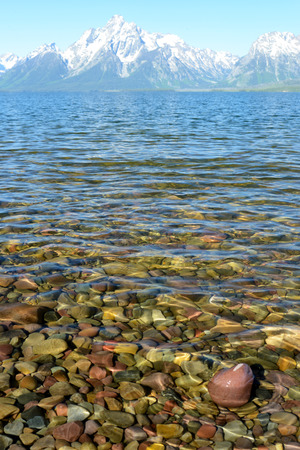 Rocks shine beneath clear blue waters of Lake Yellowstone. Stock Photo