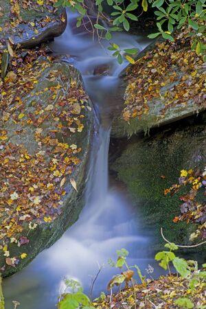 Vertical-small waterfall around fallen leaves in fall season.