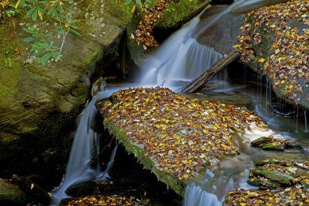 A small silky waterfall falls across flat rocks in a creek.