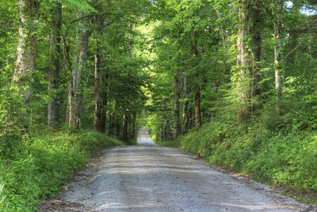 Country road leading through the mountains of Cades Cove.