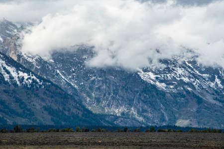 The beautiful snow capped mountains of Yellowstone and the Grand Tetons.