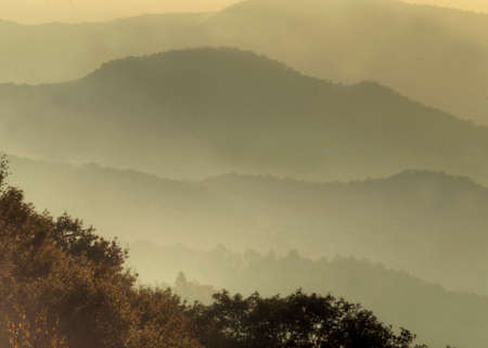 Early morning Sunlight covers layers of mountains in the Great Smoky Mountains.