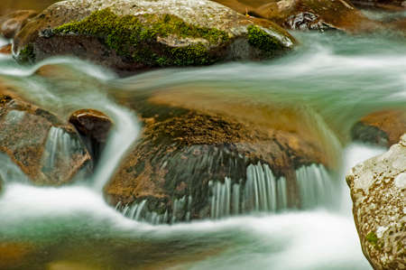 Small creek with white waters in the Great Smoky Mountains.