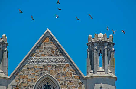 Flock of Swallows flying around the turrent of an old church.