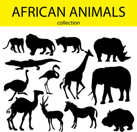 Animales africanos Foto de archivo - 39309654