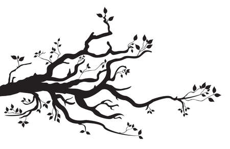 나무 가지