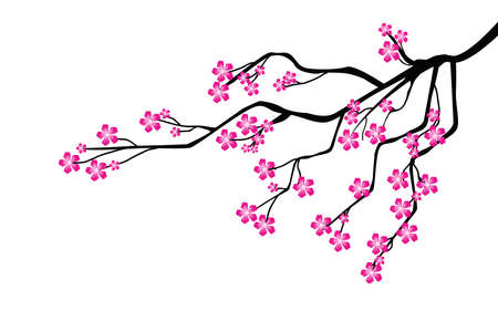 tree branch: tree branch