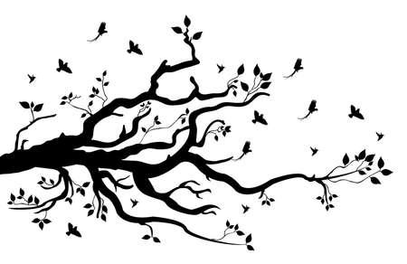 arbol pájaros: rama de un árbol