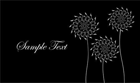 overblown: Card with abstract flowers, dandelions. Black and white business card. Vector illustration. Illustration
