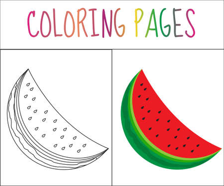 color page: Coloring book page. Watermelon. Sketch and color version. Coloring for kids. Vector illustration