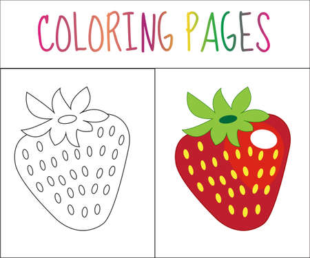color page: Coloring book page. Strawberry. Sketch and color version. Coloring for kids. Vector illustration Illustration