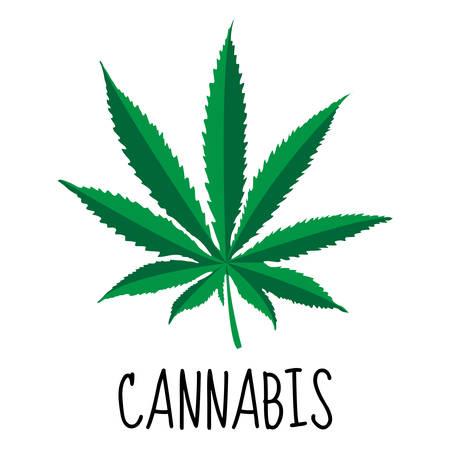plant drug: Cannabis leaf. Marijuana herb. Drug plant. Vector illustration Illustration