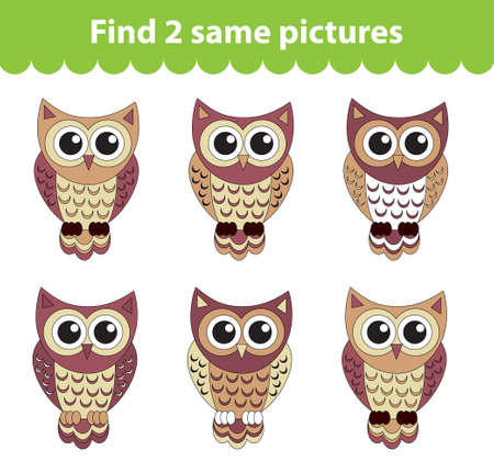 same: Childrens educational game. Find two same pictures. Set of owl for the game find two same pictures. Vector illustration. Illustration