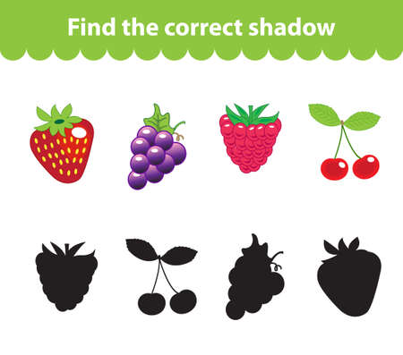 Children's educational game, find correct shadow silhouette. Fruit set the game to find the right shade. Vector illustration