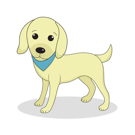 labrador: Labrador, cute dog. Cute white puppy. Isolated on white background. Vector illustration