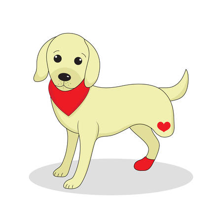 invalid: Dog without one leg. Dog invalid. Puppy with an injury. Vector illustration Illustration
