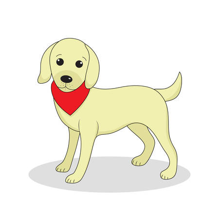 puppy isolated: Labrador, cute dog. Cute white puppy. Isolated on white background. Vector illustration