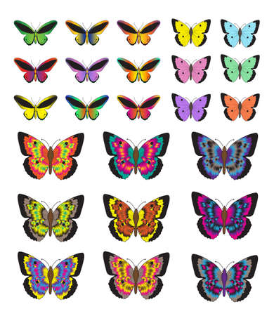 Butterfly set, isolated on white background. Multicolored butterflies. Vector illustration, clip art Illustration