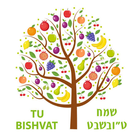 Tu Bishvat greeting card, poster. Jewish holiday, new year of trees. Tree with different fruits, fruit tree. Vector illustration Banco de Imagens - 69696771