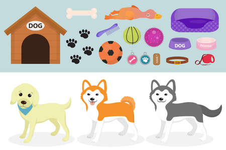 stuff toy: Dogs stuff icon set with accessories for pets, flat style, isolated on white background.