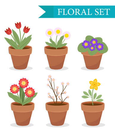Flower pot with different flowers set, flat style. Flowerpot Collection isolated on white background. Vector illustration, clip art Vettoriali